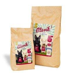 Croquettes sans céréales pour chien Saumon d'Ecosse disponibles en 2 conditionnements
